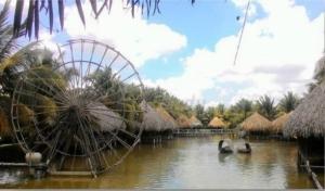 Vườn sinh thái Hoa Súng